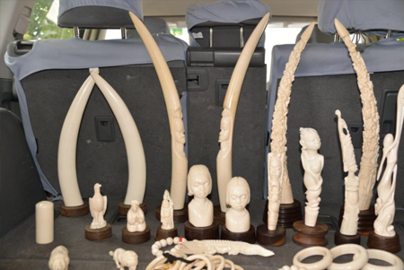 A picture displaying some of the illegal ivory that is turned into items for purchase.