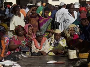 Fish Market Auction - Dar Es Salaam